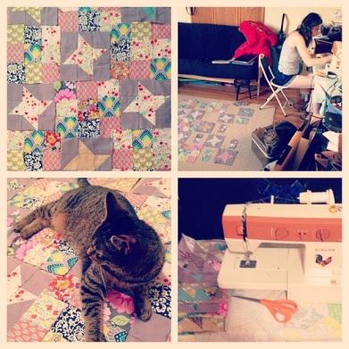 quilting, cat, quilts, Singer, sewing machine, scissors