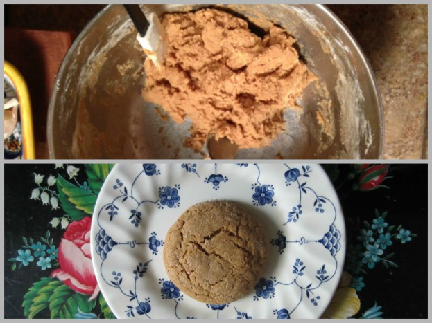 Molasses Spice Cookies [Gift Fox Quilts]